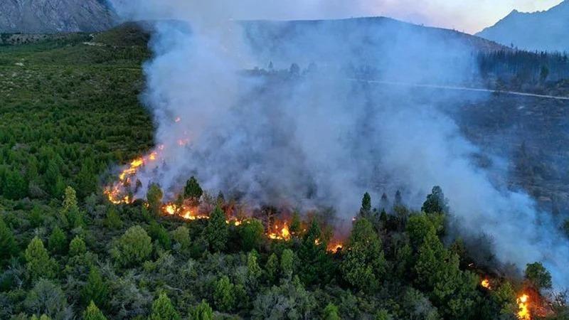 Buscan evitar la especulación económica en tierras afectadas por incendios forestales