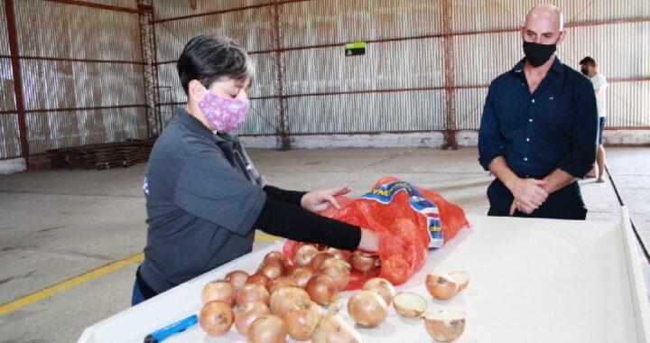 Río Colorado: Inauguraron un nuevo control fitosanitario para cebolla de exportación
